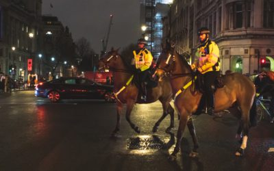 Politie en overheid:  stop  met het inzetten van honden en paarden bij conflictsituaties!